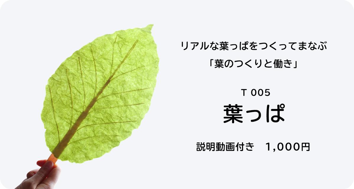 T005 葉っぱ